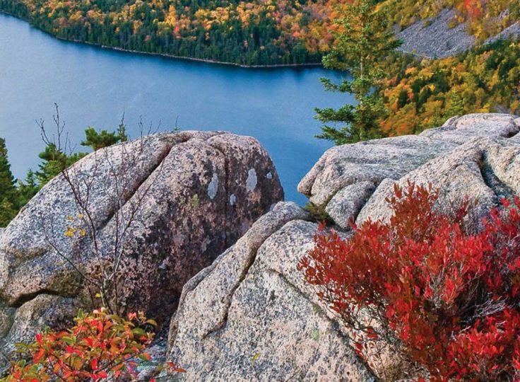 Naturally Northern New England