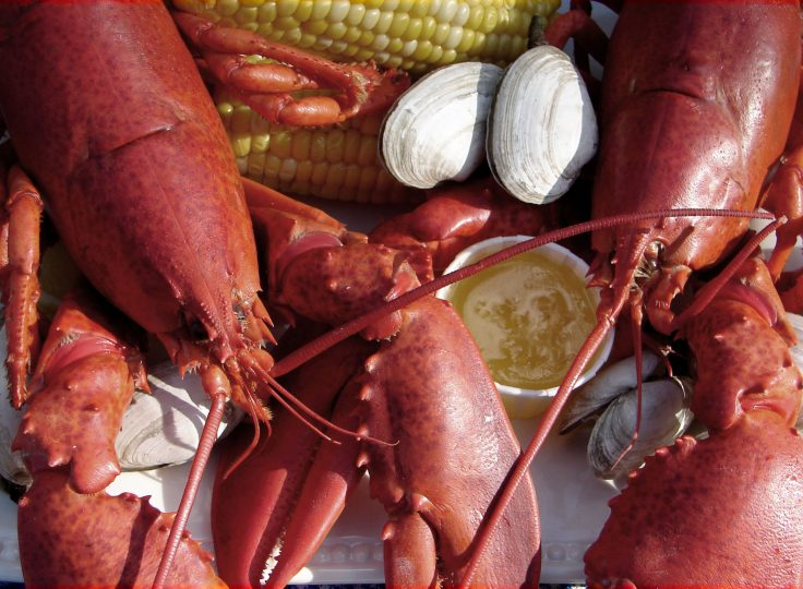 Cape Cod ~ Lobsters, Dunes & Vines